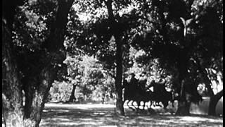 Download Renegade Girl (1946) ANN SAVAGE Video