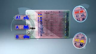 Download EU-Führerschein Umtausch und Regelungen Video