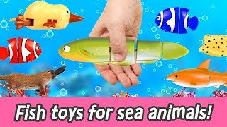 Download [EN] Fish toys for sea animals!! animal names for kids, kids animation, collecta ㅣCoCosToy Video
