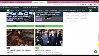 Download How to install and Import demo content on EggNews WordPress Theme Video