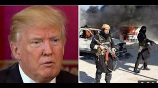 Download '교활한 쥐새끼'에게 전쟁을 선포한 트럼프 대통령 Video