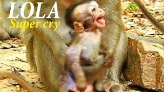 Download Piece Of Heart Breaking, Poorest Baby Lola crying seizure sound, Why Bertha do so bad like that? Video