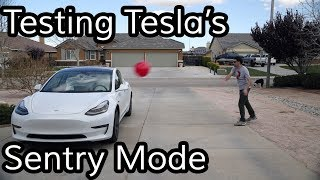 Download Does Tesla's Sentry Mode Work? Video