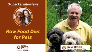 Download Dr. Becker and Steve Brown on Raw Food Diet for Pets (Part 1) Video