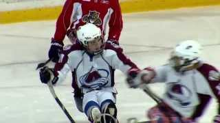 Download An inside look at the world of sled hockey Video