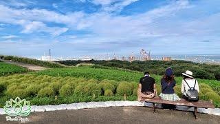 Download Seaside Park In Ibaraki Japan   Hitachi Koen Video