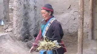 Download Tibetan Woman's life Video
