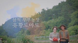 Download [카페트] 유황토마토 - 농장편 Video