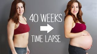 Download Adorable Pregnancy Time Lapse! Video