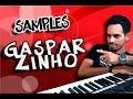 Download SAMPLES GASPARZINHO | YAMAHA S750/950 Video