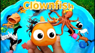 Download Learn Colors With Wild Animals and Sharks in Blue Water Tub Toys For Kids Video