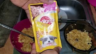 Download Pedigree Puppy Chicken Chunk Mix Rice - 20 February 2019 Video