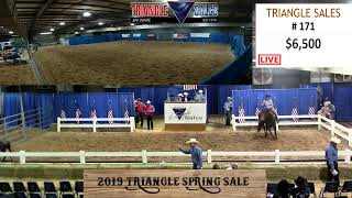 Download 2019 Triangle Spring Sale LIVE Video