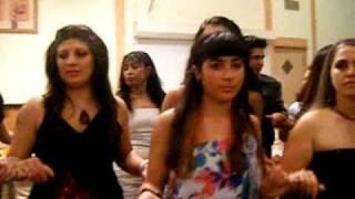 Download GRUP ADAL ″ Uzun hava-halay″ yeniii Diyarbakir-Amasya dugunu Arnhem-Hollanda Video