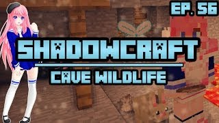 Download Cave Wildlife | ShadowCraft | Ep. 56 Video