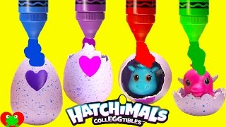 Download Hatchimals Colleggtibles Surprise Eggs Video