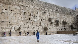 Download Trump visits the Western Wall in Jerusalem Video