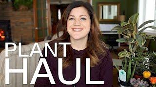 Download Plant Haul // Garden Answer Video