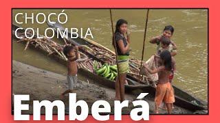 Download Moments by Pep - Comunidad Emberá procesando caña de azucar / Rio Pató - Chocó- Colombia Video