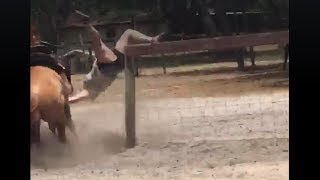 Download Woman Horse Trainer Gets Bucked Off - Gradated #1 In The Walmart School Of Horse Training Video