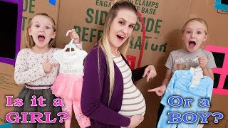 Download Our Mom is Pregnant for 24 Hours Challenge! Is the Baby a Boy or Girl? Video