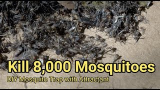 Download Mosquito trap DIY 8,000 mosquito kill reduce ZIKA DENGUE MALARIA MaxxAir Fan CO2 Video