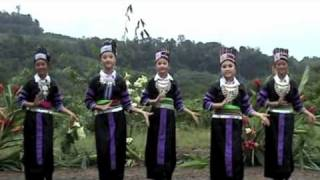 Download Cacao Video 4 French Guiana Hmong dancer Video