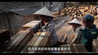 Download 2016年世界森林状况:森林和农业——土地使用挑战和机遇 Video