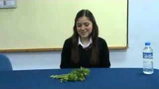 Download EFT UYGULAMALARI (Takıntılar) ARALIK 2010.BİGA Video