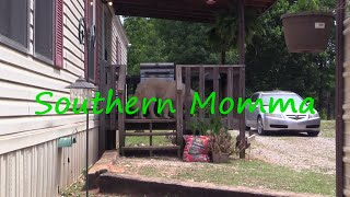 Download ″Southern Momma An Summer Chores!″ #DarrenKnight #Comedy #Funny #Comedian #LOL #StandUpComedy Video