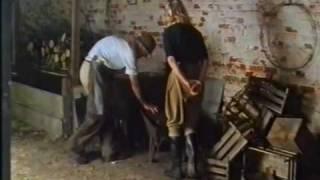 Download The Wartime Kitchen & Garden - Episode 8 (1/3) Video
