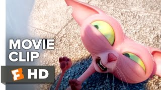 Download The Secret Life of Pets Movie CLIP - Where is Max? (2016) - Jenny Slate, Steve Coogan Movie HD Video
