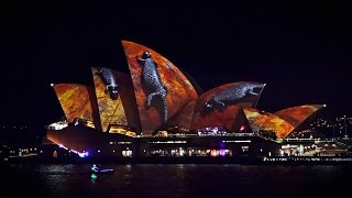 Download Vivid light festival 2016 Sydney Opera House full hd 50fps Australia Video