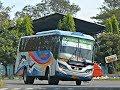 Download AKSI Manuver TAJAM 30an Bus Sugeng Rahayu Di Tikungan MOJOKERTO. Video