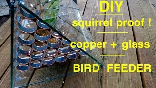 Download How to make ● a SQUIRREL PROOF Bird Feeder Video