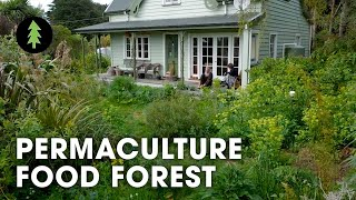 Download Thriving 23-Year-Old Permaculture Food Forest - An Invitation for Wildness Video