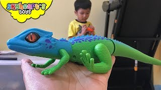 Download Scary LIZARD GECKO in our room! Toddler plays with robo alive pets snake lizard and toys zuru Video