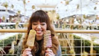 Download Los Angeles with Tara Milk Tea Video