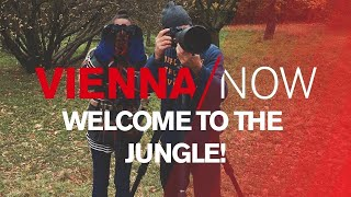 Download Welcome to the jungle - Vienna's wild citizens! | VIENNA/NOW Video