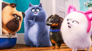Download THE SECRET LIFE OF PETS 2 - 7 Minute Trailer (2019) Video