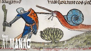 Download Why knights fought snails in medieval art Video