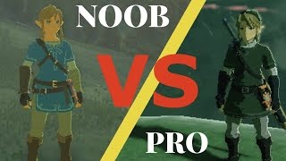 Download Breath of the Wild NOOB VS PRO Video