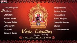 Download Vedic Chanting || S. Rajagopalsharma || Sanskrit Devotional Jukebox Video