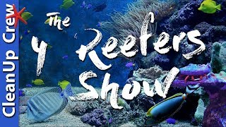 Download Clean up Crew For a Saltwater Tank - The 4 Reefers Show Episode 3 Video