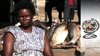 Download The Kenyan Fishing Community Ravaged By AIDS Video