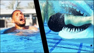 Download I Learned How To Survive A Shark Attack Video