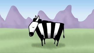 Download Zany Zebra Animation (Moho Pro 12) Video