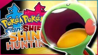 Download LIVE SHINY CHEWTLE HUNTING! Pokemon Sword & Shield Shiny Hunting! Video