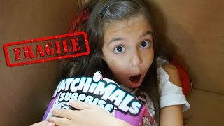 Download I Mailed Myself in a Box to Hatchimals HQ and got the NEW HATCHIMALS SURPRISE!!! Video