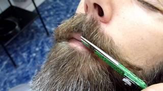 Download THE BEARD! Farsi la barba in provincia di Modena Video